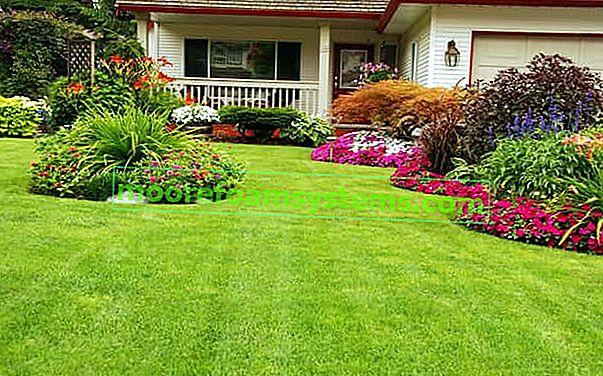 Moderni vrtovi - projekti, ideje, uzorci aranžmana, savjeti