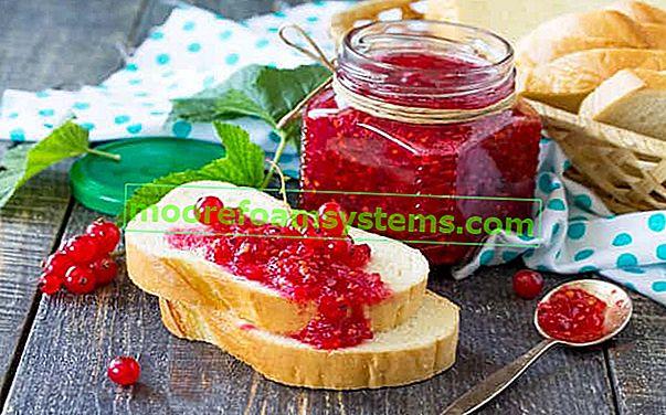 Варенье из красной смородины - лучшие рецепты варенья на зиму