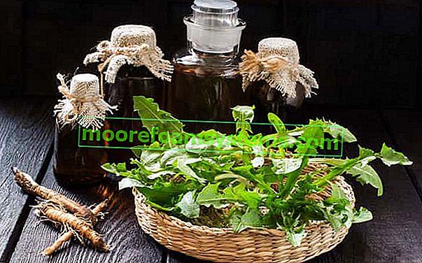 Настойка из одуванчика - проверенные пошаговые рецепты настойки из одуванчика