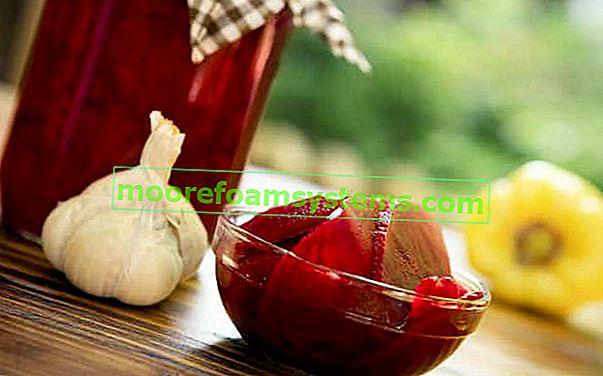 Postupno kiseljenje crvenog boršča - pogledajte najbolje recepte