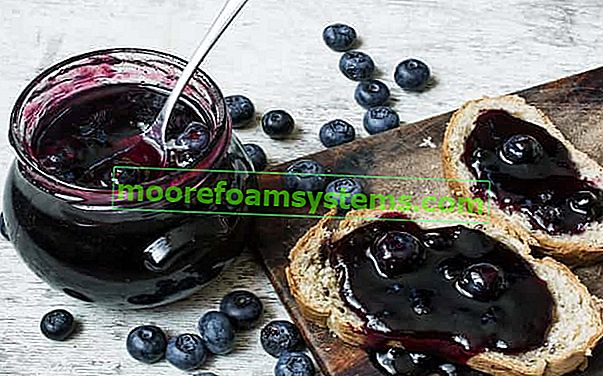Džem od borovnica - provjereni recepti korak po korak