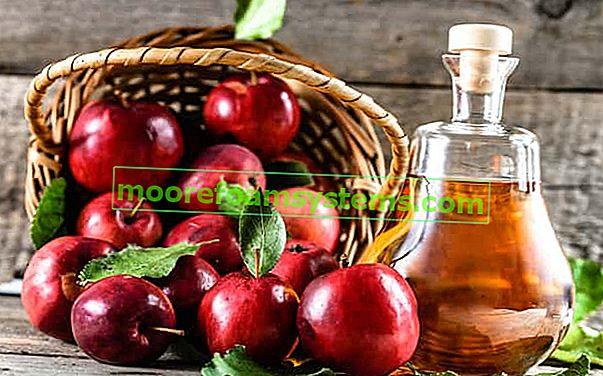 Almabor - bevált receptek házi almabor készítéséhez