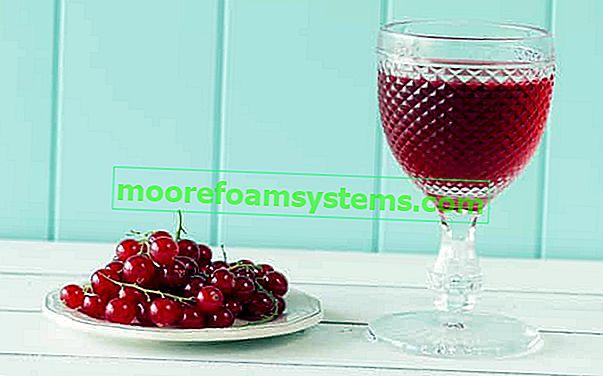 Vörös ribizli bor - bevált receptek lépésről lépésre