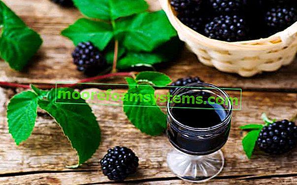 Kupinovo vino - provjereni recepti za ukusno domaće vino