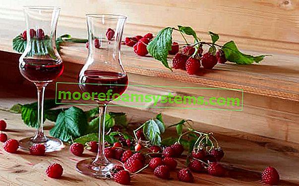 Vino od maline - provjereni recepti kako napraviti domaće vino od maline