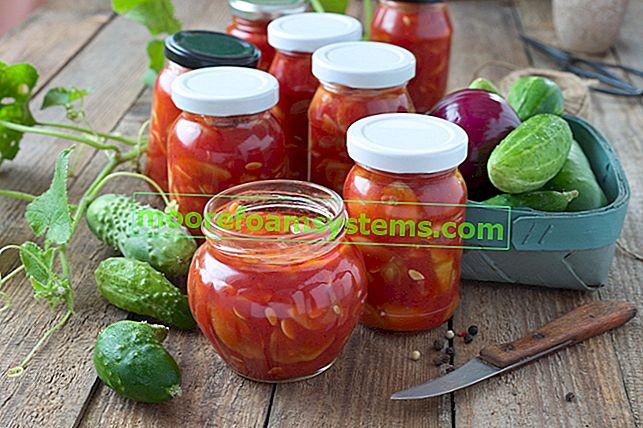 Ciganski krastavci - jednostavan recept za krastavce u rajčici