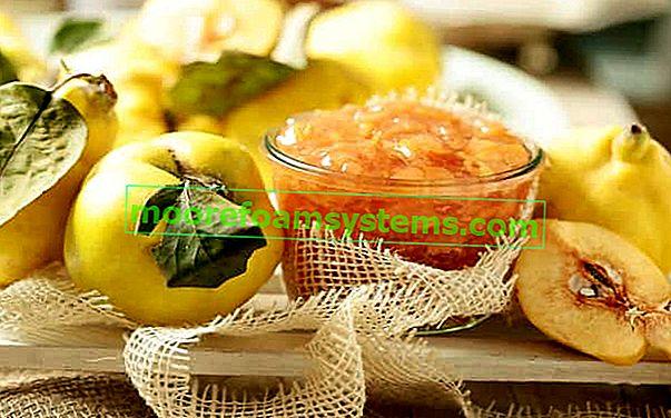 Džem od dunja - korak po korak recept za ukusne konzerve