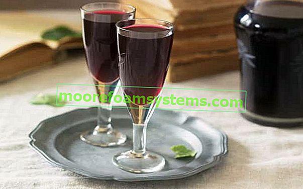 Tinktura bobica - najbolji recepti za tinkturu borovnice s duhom