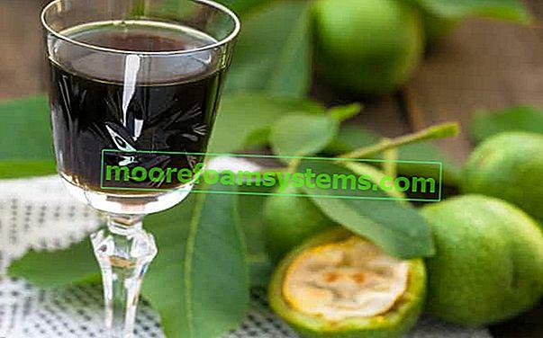 Tinktura od orašastih plodova - provjereni recepti za razne vrste alkoholnih tinktura