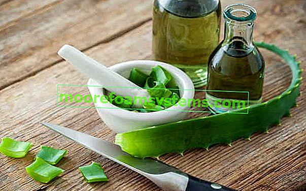 Tinktura aloje - najbolji recepti, svojstva, upotreba, savjeti