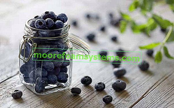 Američke konzerve od borovnica - provjereni recepti korak po korak