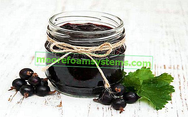 Džem od crnog ribiza - recept za ukusni džem od ribiza korak po korak