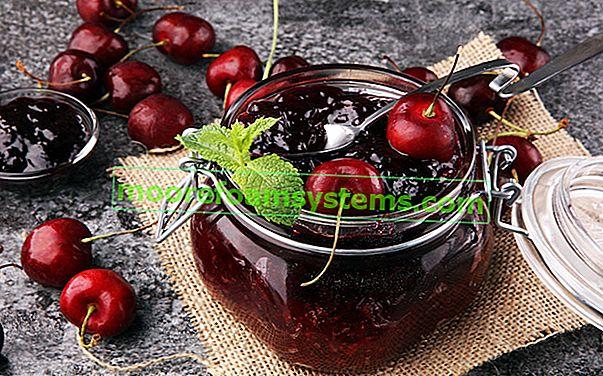 Džem od višanja - recept za džem od višanja korak po korak