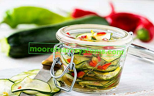 Salata od tikvica za zimu - najbolji recepti za ukusnu salatu za staklenke