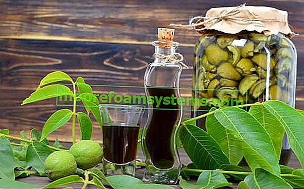 Tinktura od oraha - provjereni recepti za duh, svojstva, savjeti