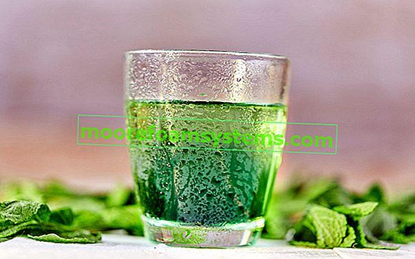 Мятный сок - лучший рецепт мятного сиропа на зиму