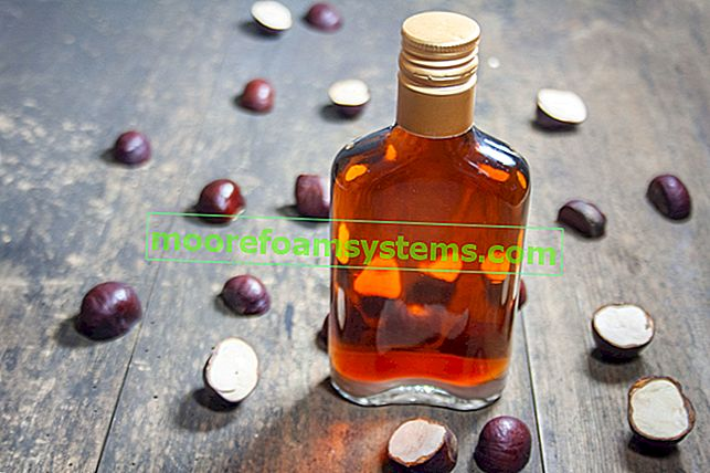 Tinktura kestena - provjereni recepti, svojstva, primjena