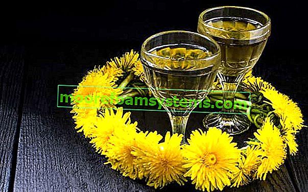 Vino maslačka - provjereni recepti za vino od cvijeta maslačka