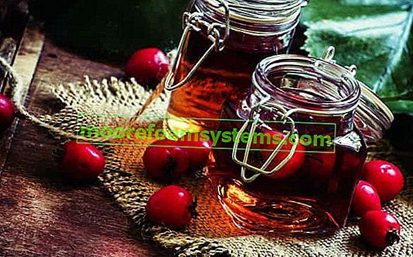 Настойка шиповника на спирте - свойства, пошаговый рецепт