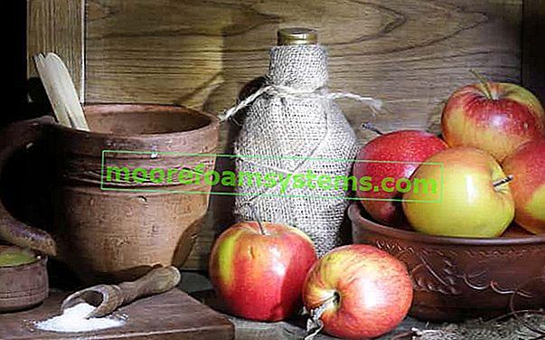 Tinktura jabuke - najbolji recepti za tinkturu jabuke na špiritu