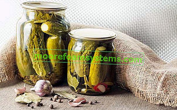 Točenje kiselih krastavaca - provjereni recepti za kiseljenje korak po korak
