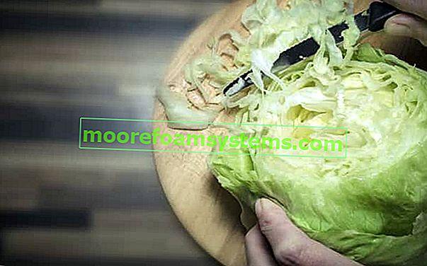 Zelena salata i salate - najboljih 5 recepata