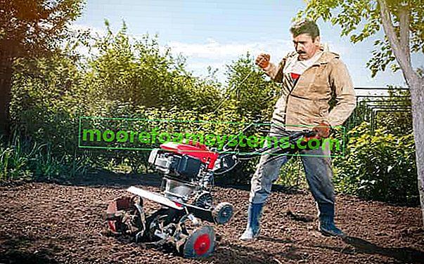 Vrtni kultivator - vrste, primjena, cijene, preporučeni modeli