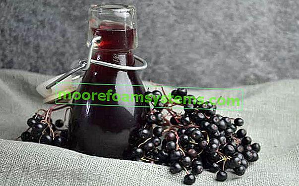 Vino od bazge - provjerite najbolje recepte za vino od bazge