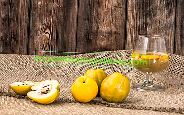 Vino od dunje - provjereni recepti za vino od ploda dunje
