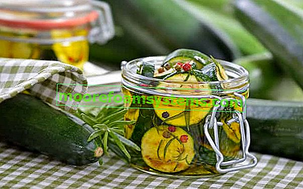 Cukkini télire - receptek az ízletes cukkini konzervek elkészítéséhez a télhez