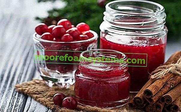 Džem od brusnica - najbolji recepti za konzerve, džemove i džem od šljiva korak po korak