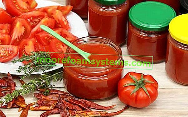 Kako napraviti konzerve od rajčice za zimu?