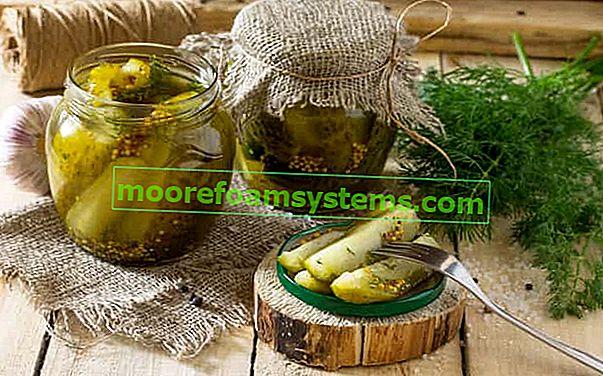 Krastavci u senfu - najbolji recepti za krastavce s senfom na različite načine