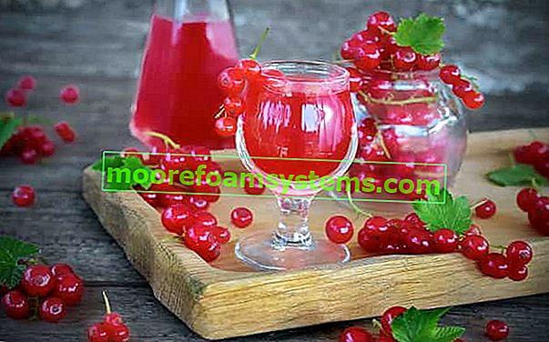 Настойка из красной смородины - пошаговый рецепт приготовления смородины
