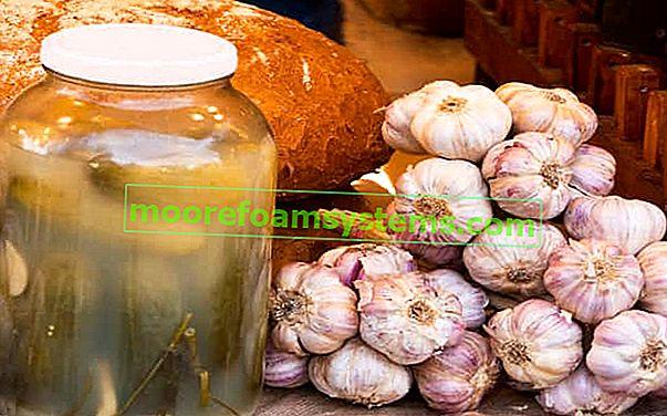 Kiseli krastavac sok - blagodati i svojstva vode krastavca