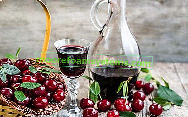 Cseresznye tinktúra - cseresznye vodka a szellemen lépésről lépésre