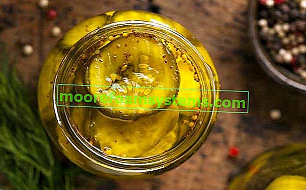 Curry uborka - a legjobb curry uborka receptek üvegekbe