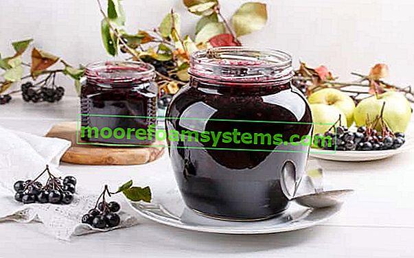 Džem od aronije - najbolji recepti za očuvanje aronije