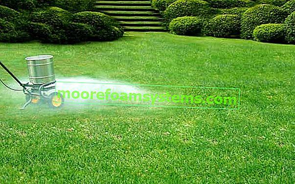Koje gnojivo za travu odabrati? Provjeravamo najbolje pripreme za gnojidbu travnjaka